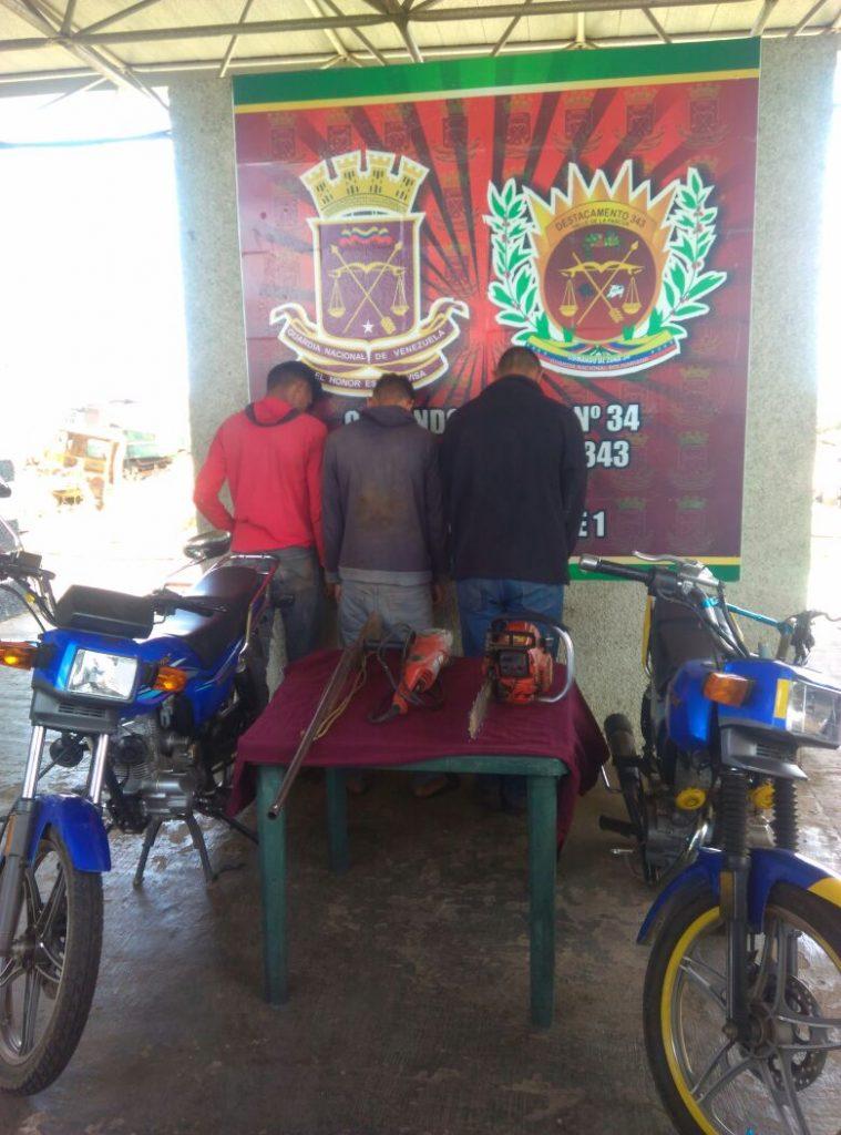 Detenidos tres ladrones